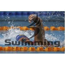 1459981127_NZSopen16d3034.jpg